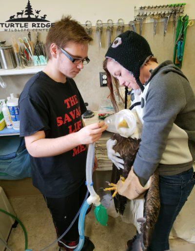 eagle exam