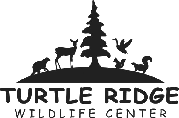 Turtle Ridge Wildlife Center